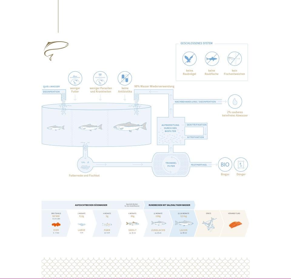 WooCommerce Shop und Werbemittel für Schweizer Startup